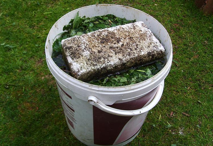 Как сделать настой из трав для подкормки растений